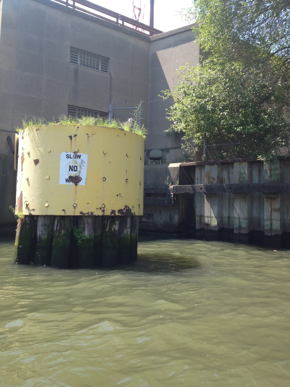 Piling protecting a Chicago River bridge (photo taken by Joshua Yellin)