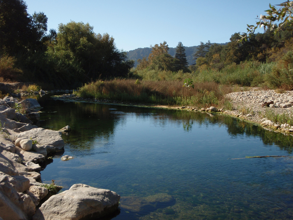 Ventura River, Preserved Steelhead (Rainbow) Trout Habitat