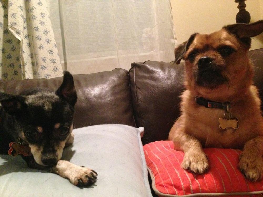Cubby & Wrigley