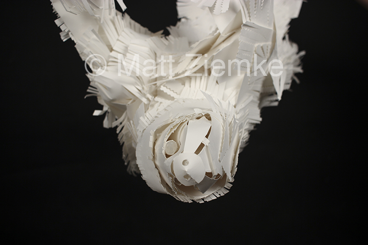 Sloth - Detail