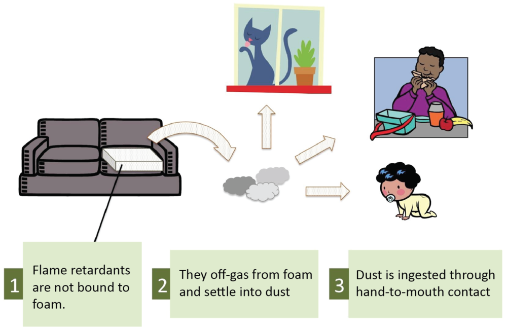 Click through to learn more about flame retardants with the Green Science Policy Institute.