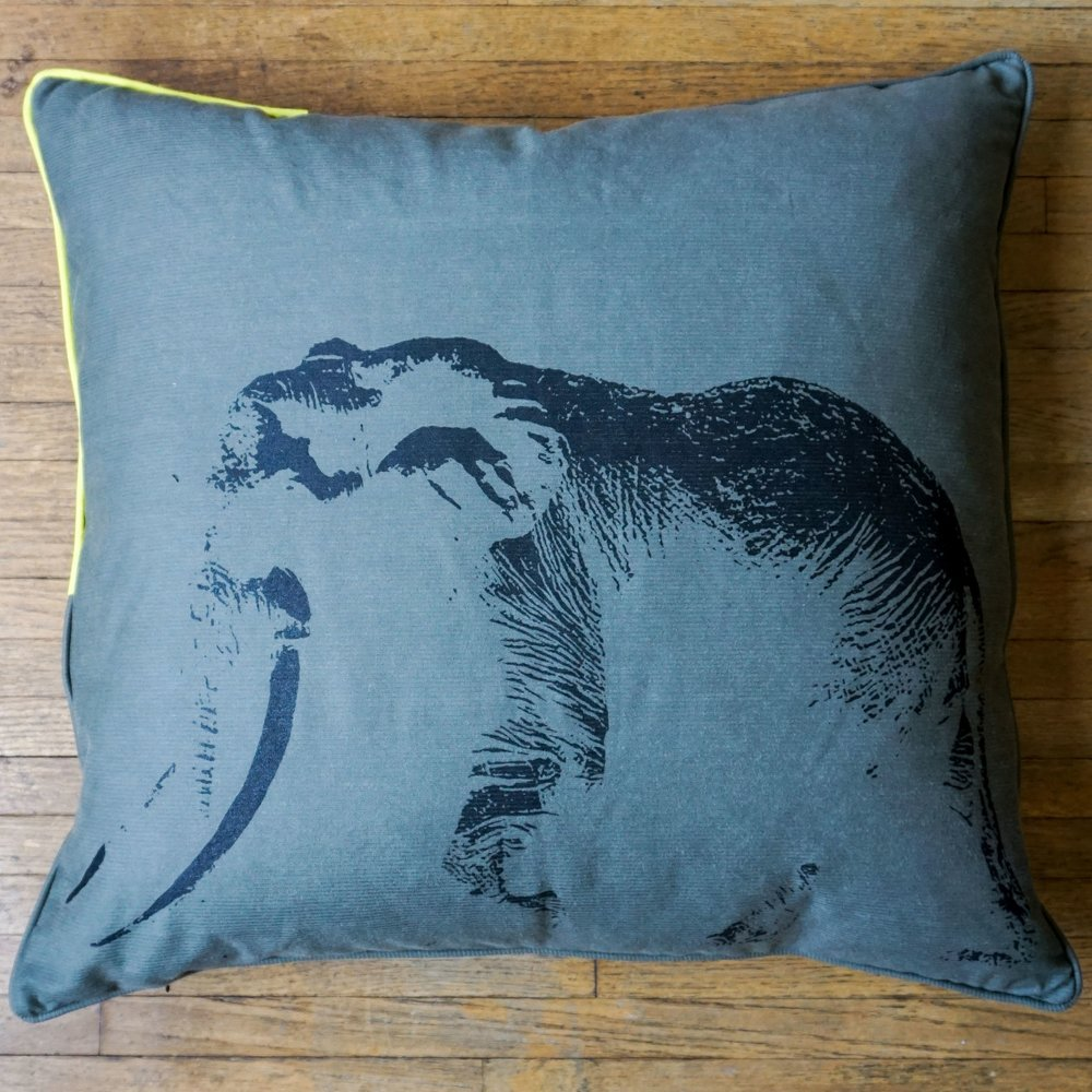 Click through and get to know our Ghost of Satao pillow!