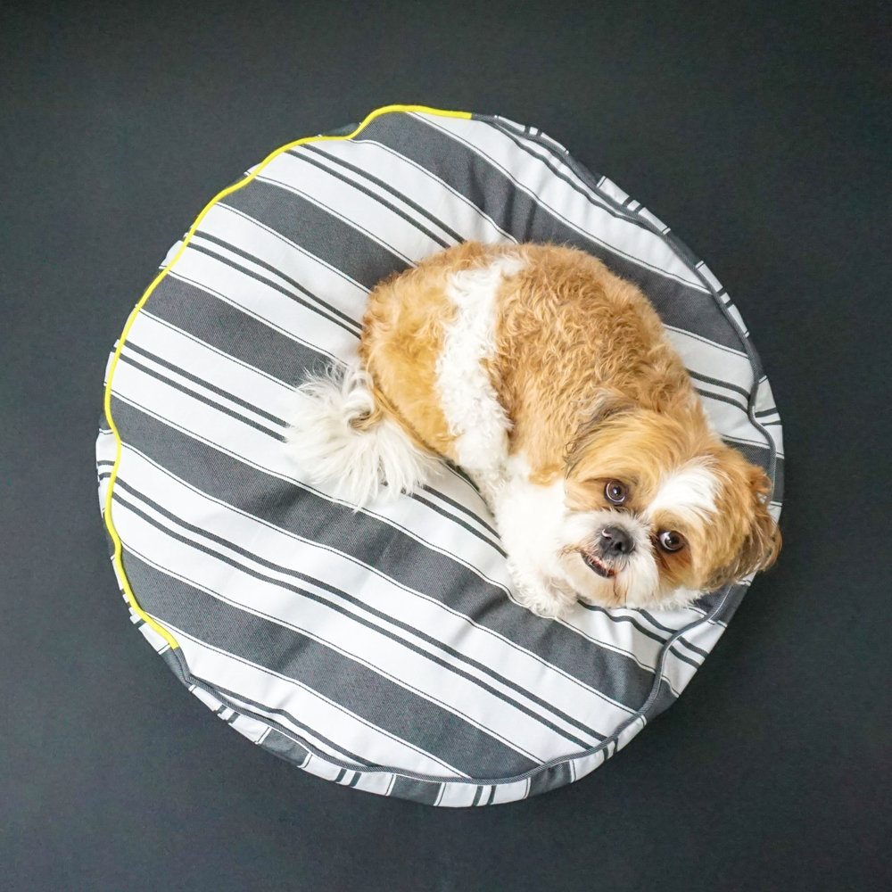 Zubee  @bunkiibeanbryant  is demonstrates how to use our Feather Dog Bed.