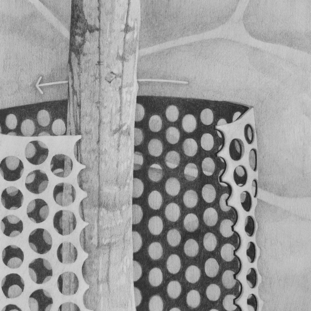 Kalendarium Hortense, guard (remove).jpg