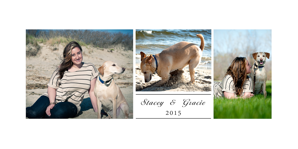 New Jersey Pet Photographer, Sandy Hook NJ