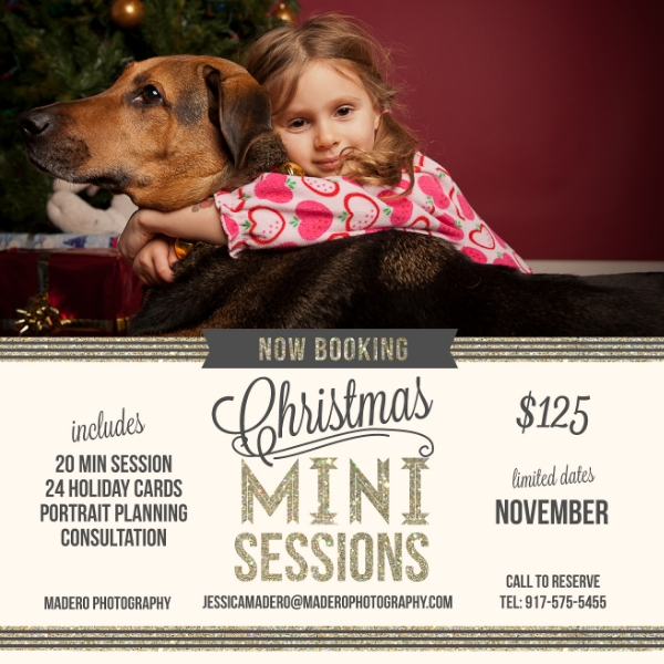 Christmas Mini Sessions, Pet Photography, Staten Island NY