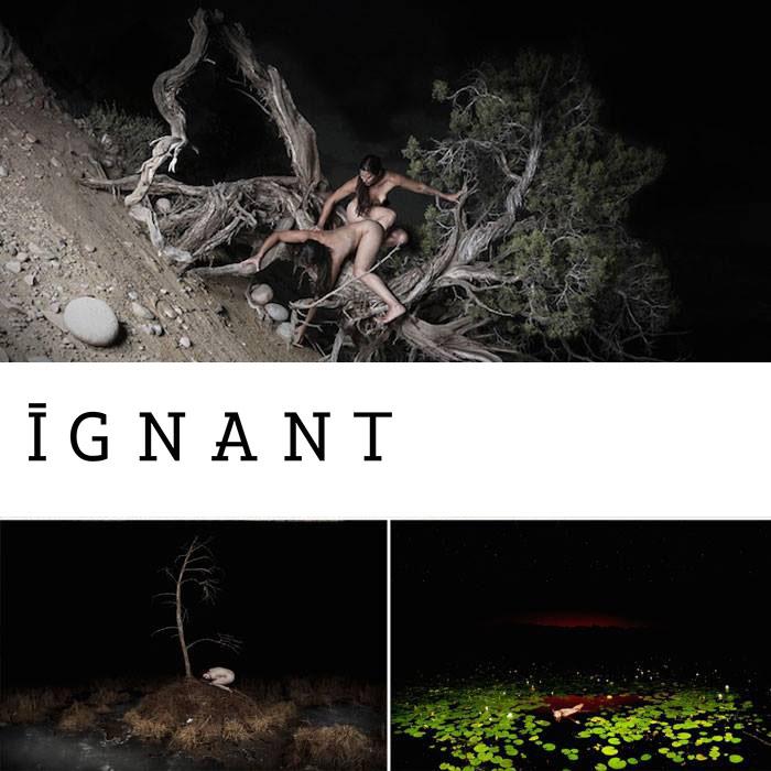 iGNANT, November 2014