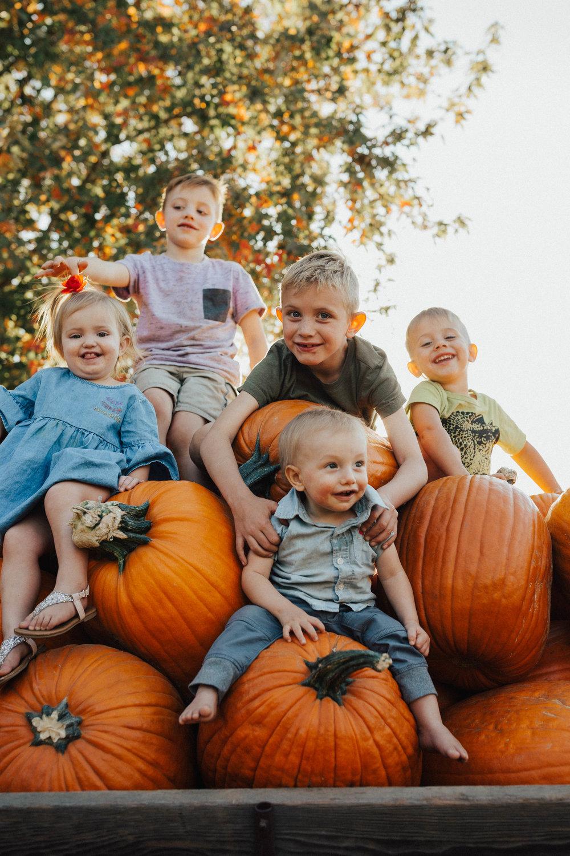 Pumpkin Patch-14.jpg