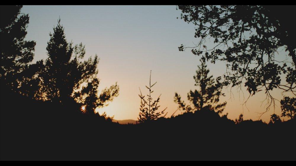 frame 13.jpg