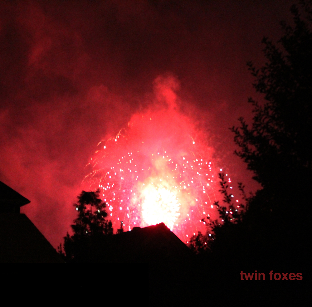 TWIN FOXES TWIN FOXES EP (2015)
