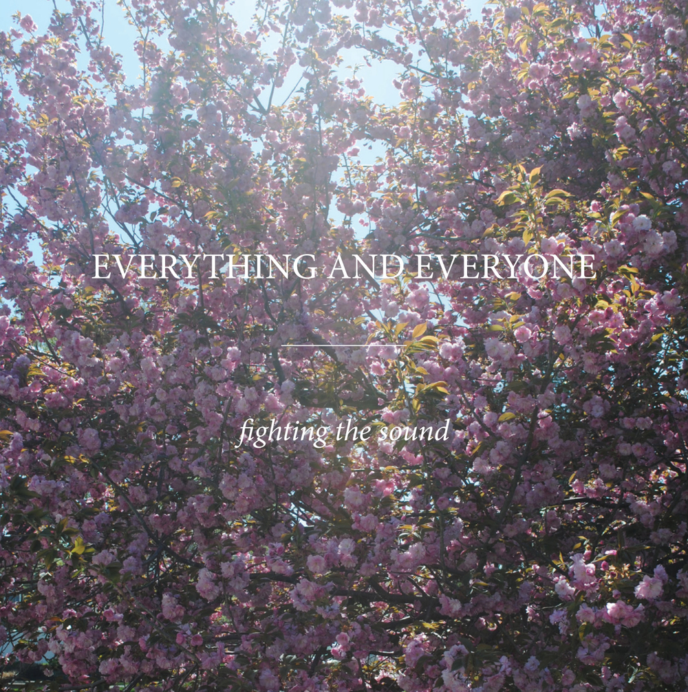 EVERYTHING AND EVERYONE FIGHTING THE SOUND (2015)