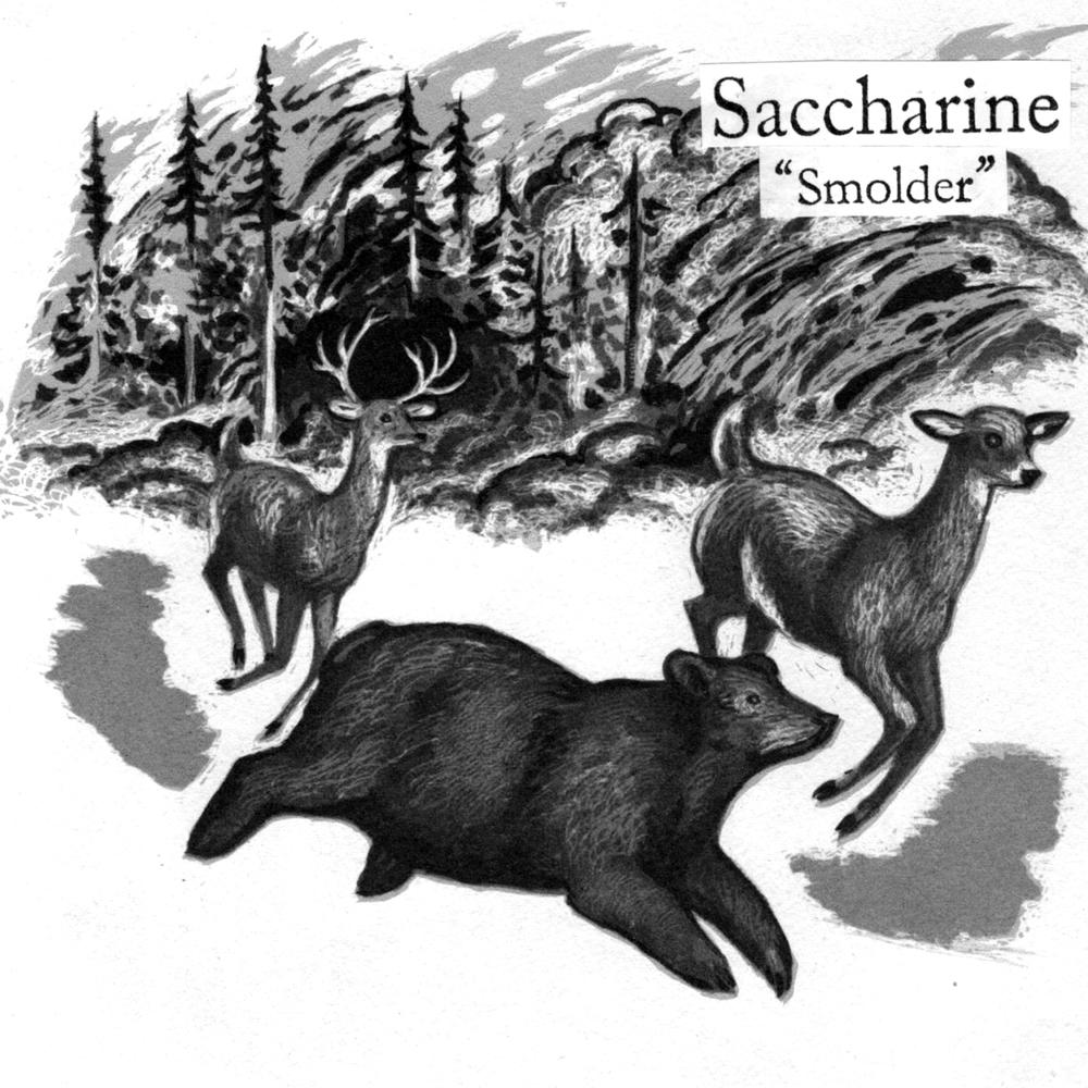 SACCHARINE SMOLDER (2016)