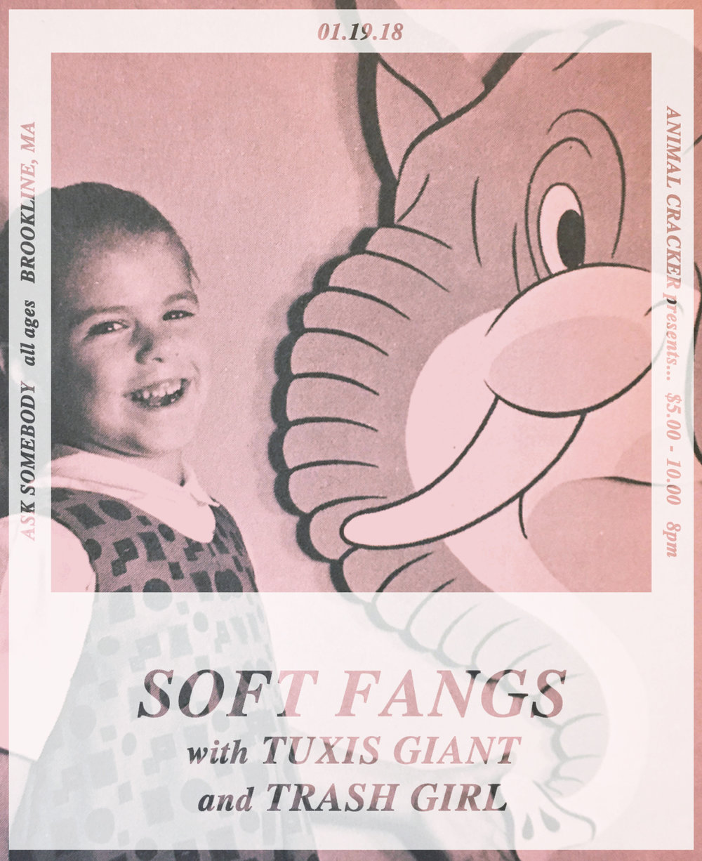 Flyer-SoftFangs011918-Pinks copy.jpg