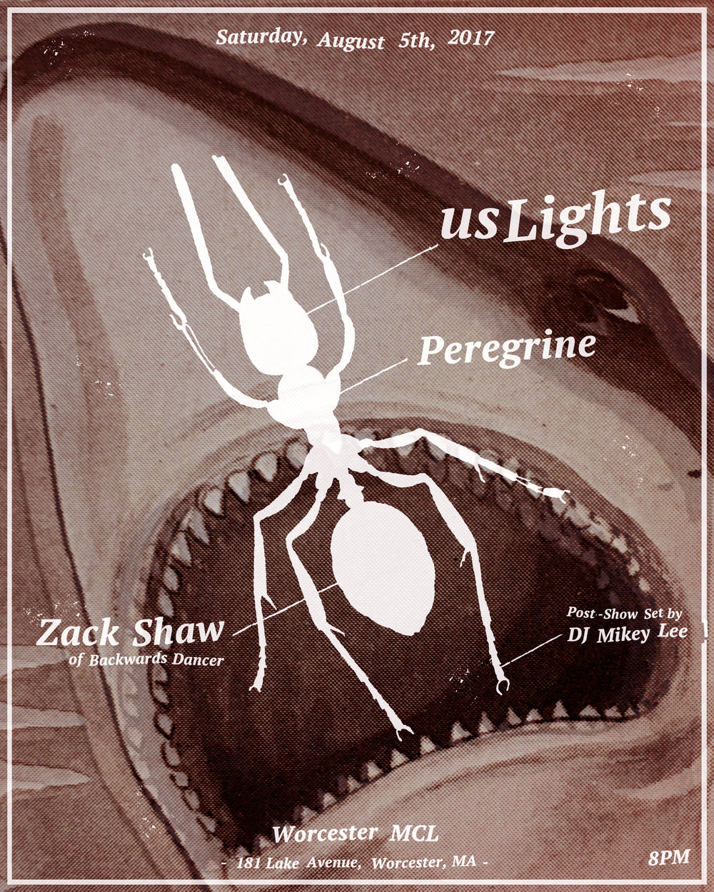 Flyer-USLights85-FinalMaybe2 copy.jpg