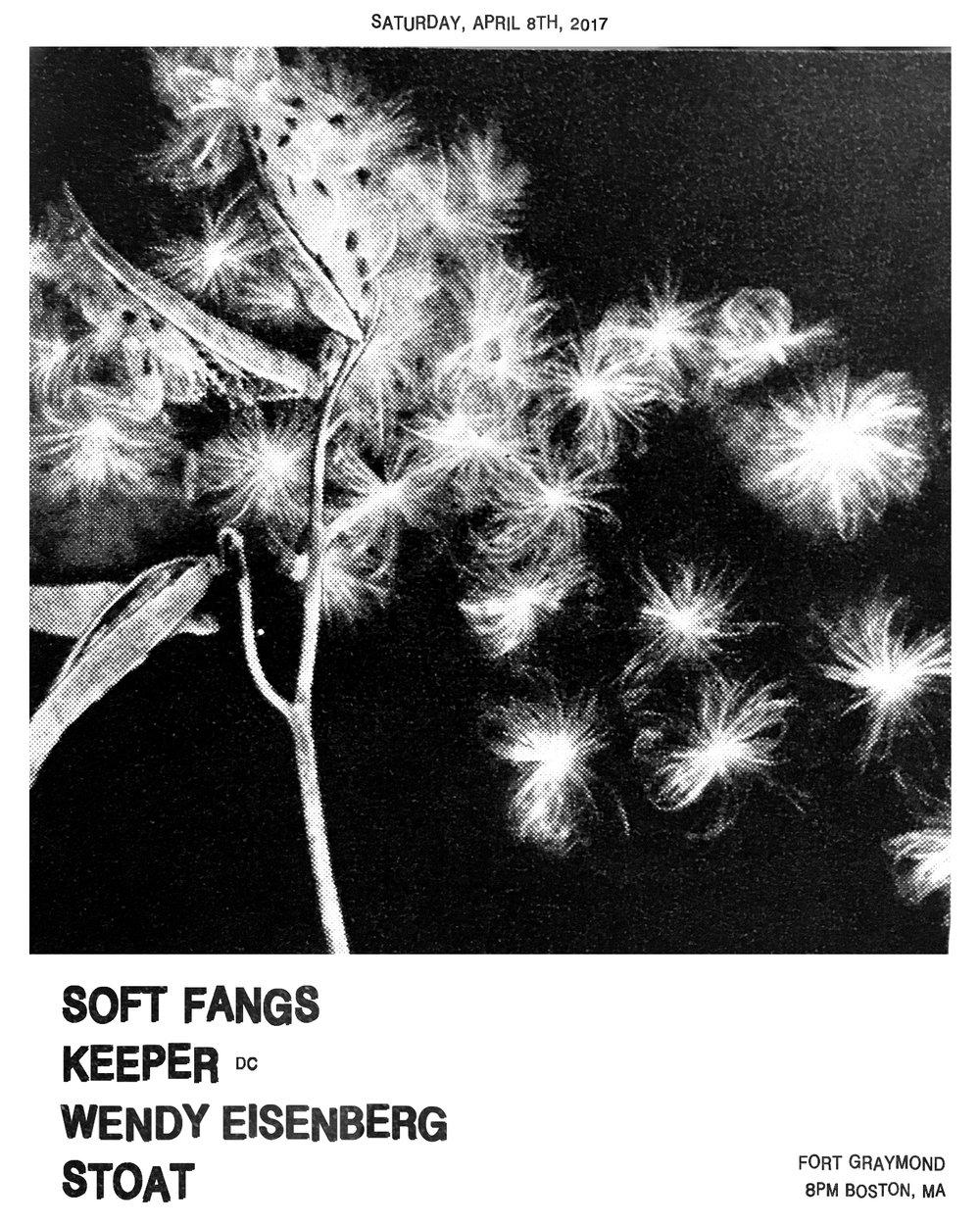 Flyer-SoftFangs48-UpdatedWendy copy.JPG