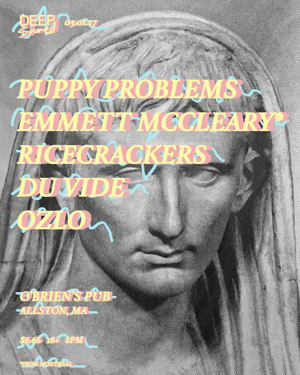 Flyer-PuppyProblems31-3 copy.jpg