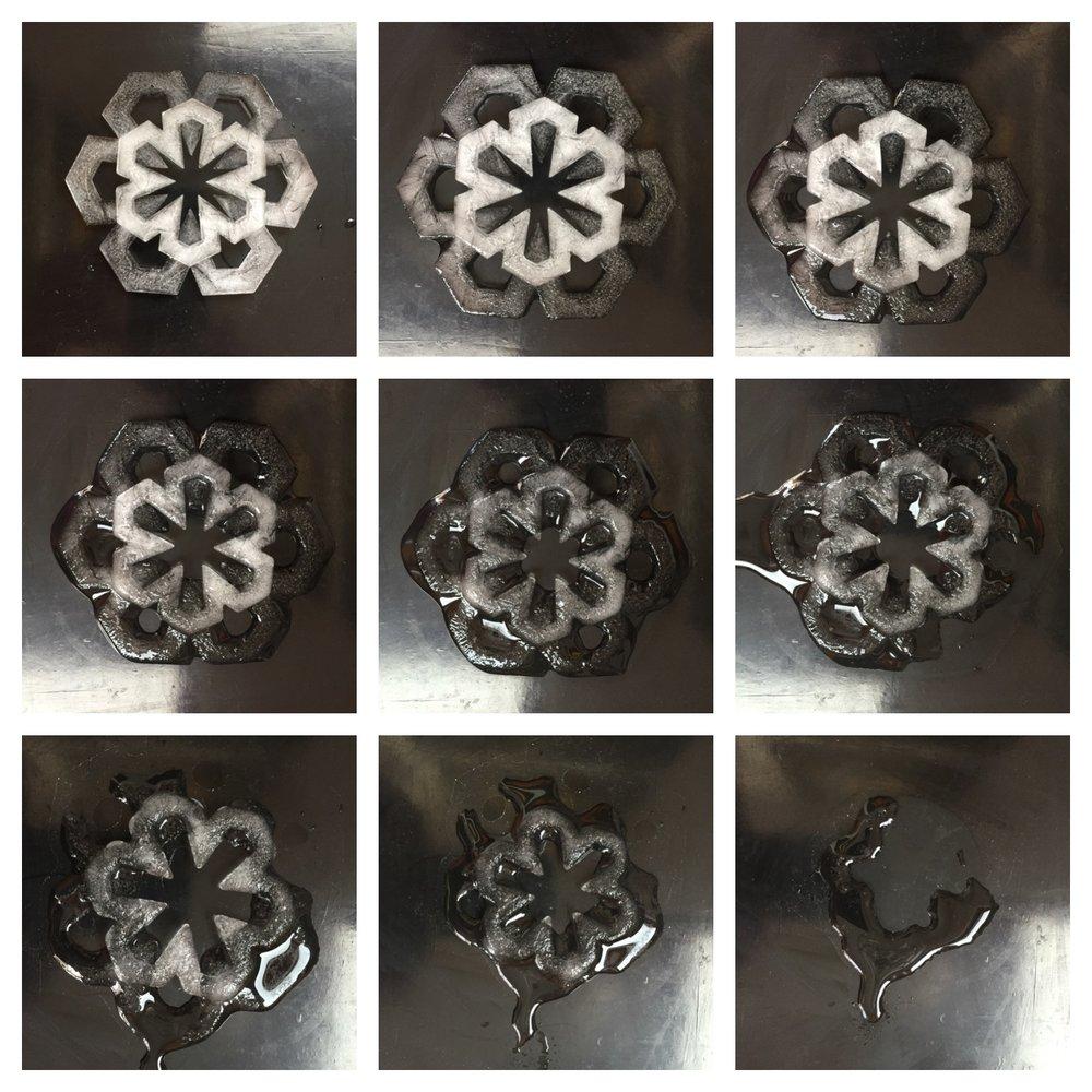 Snowflake study, 2015