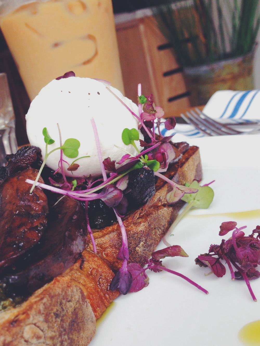 Mushroom Toast w/poached egg, walnut pesto, and microgreens