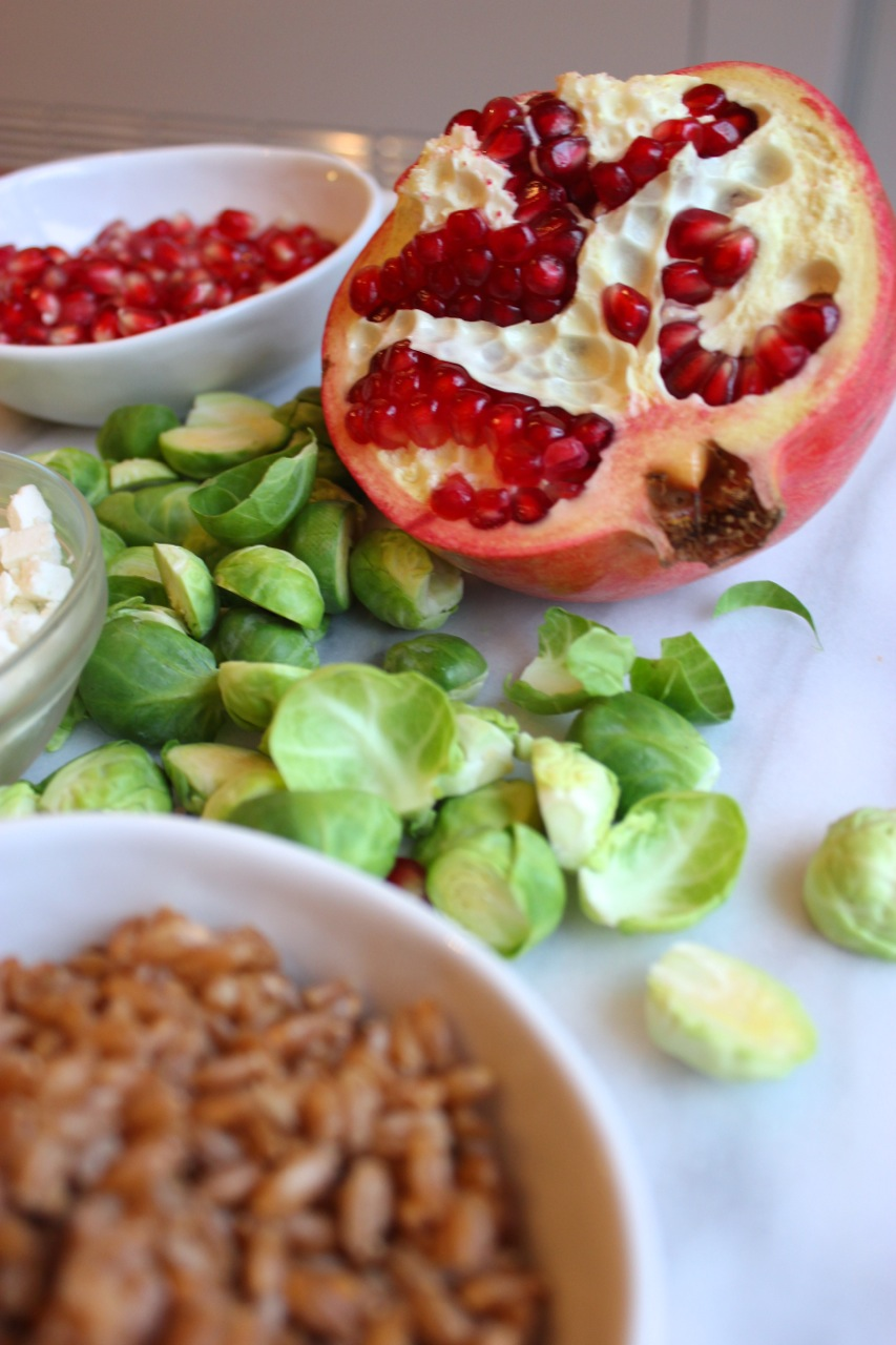 Roasted Brussel Sprouts w:Pomegranate, Feta, and Farro | Living Minnaly08.jpg