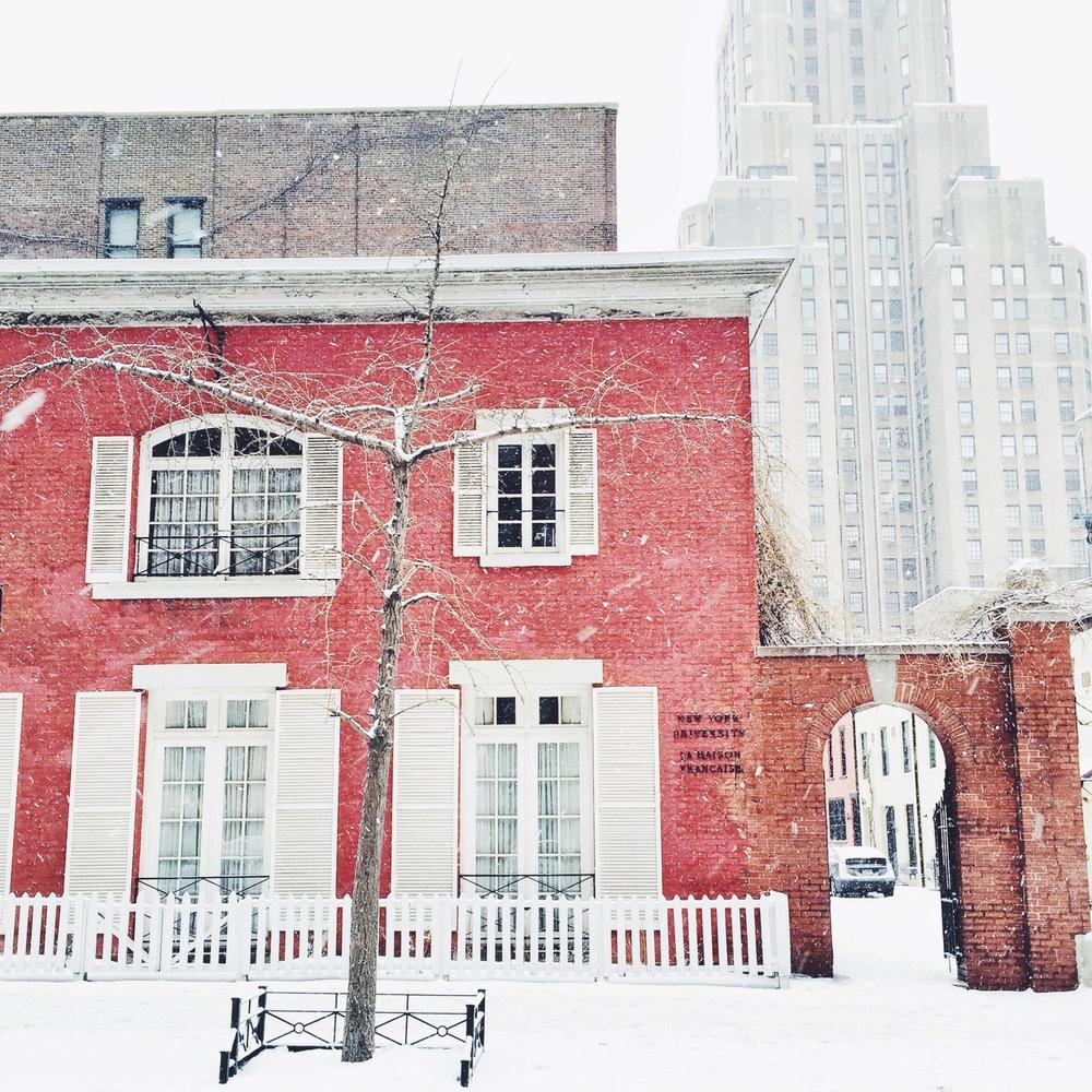 NYU | Living Minnaly