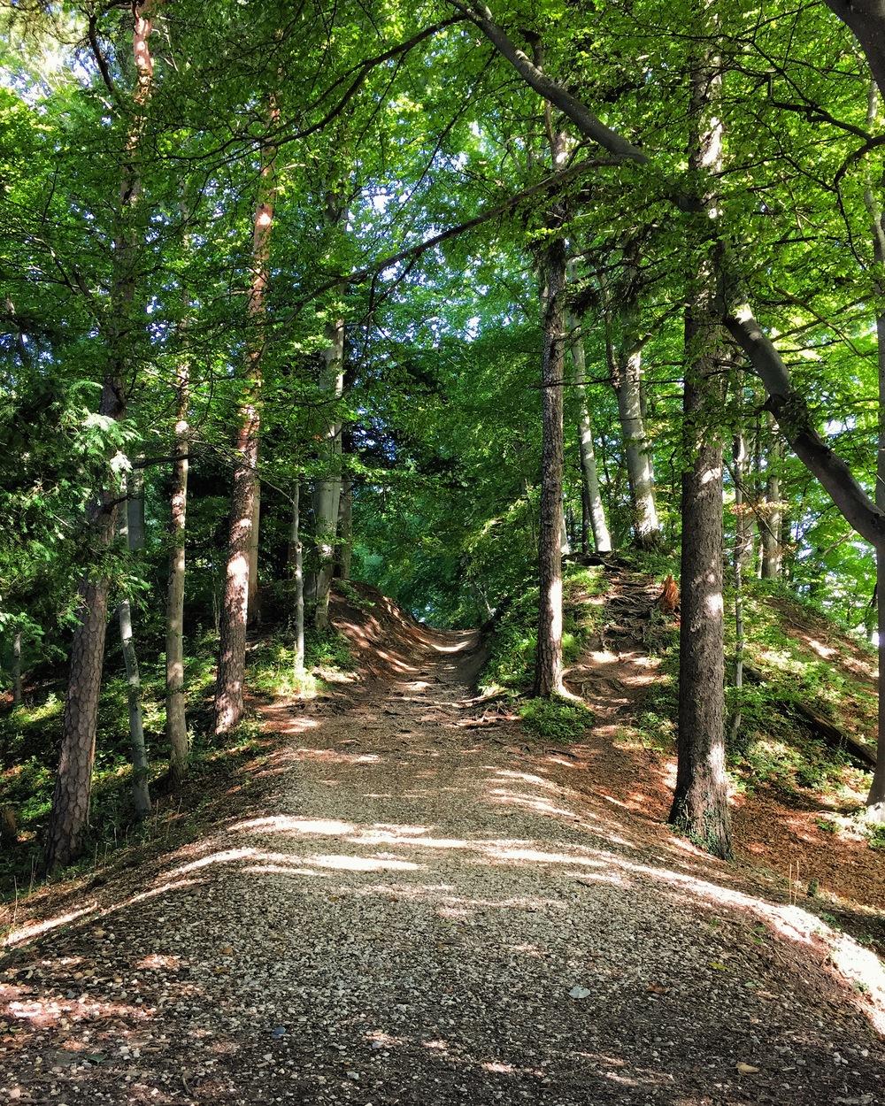 Uetliberg | Living Minnaly
