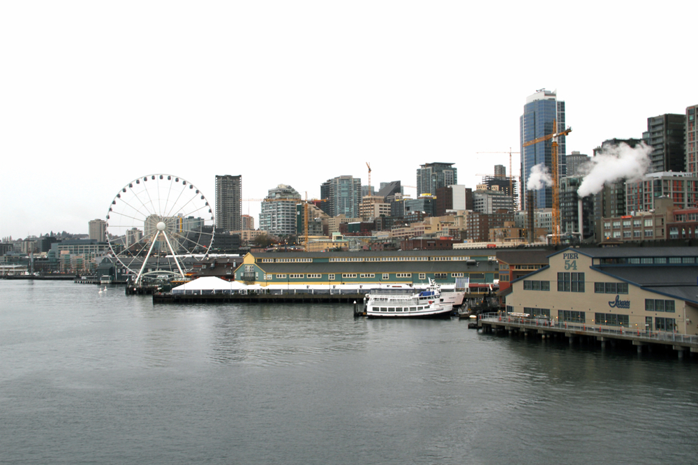 Seattle | Living Minnaly62.jpg