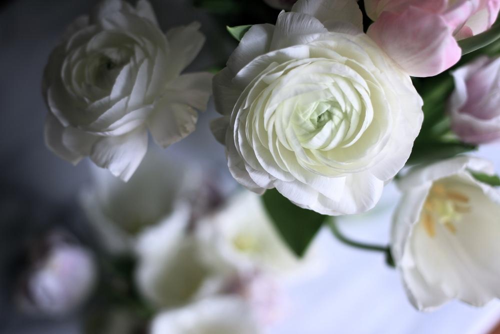 Gratitude Challenge | Living Minnaly