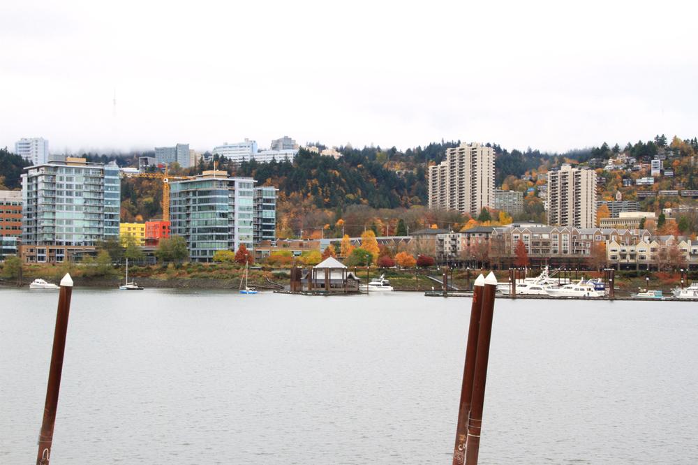 When in Portland | Living Minnaly20.jpg