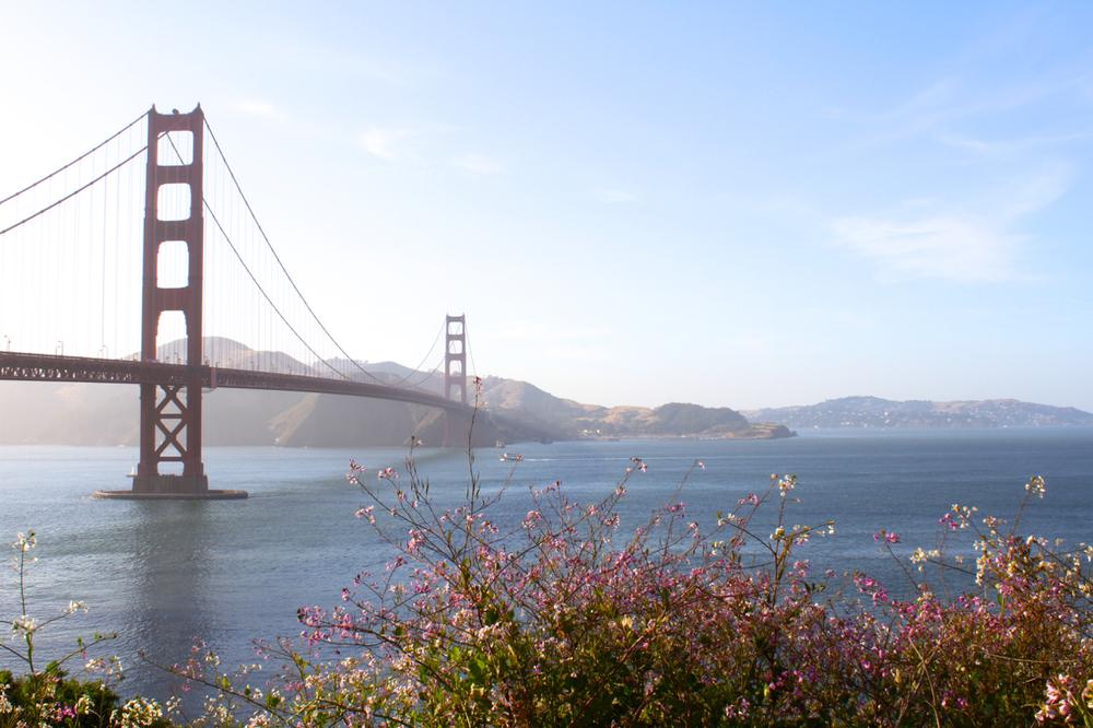 California Coast | Living Minnaly01.jpg