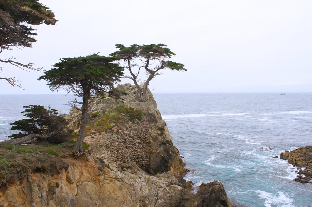 California Coast | Living Minnaly08.jpg