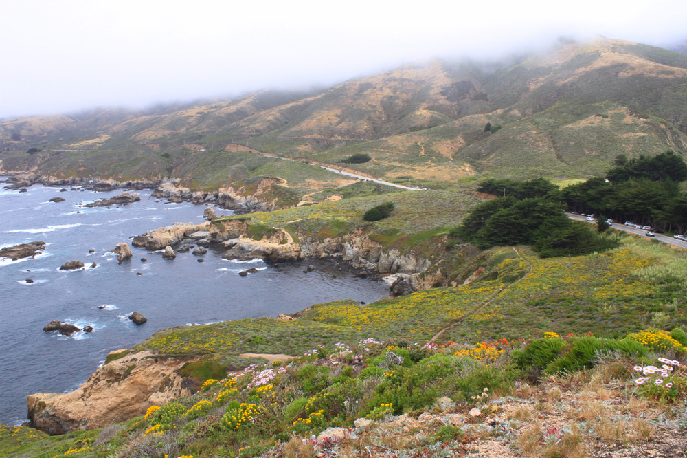California Coast | Living Minnaly13.jpg