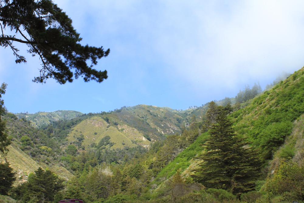 California Coast | Living Minnaly22.jpg