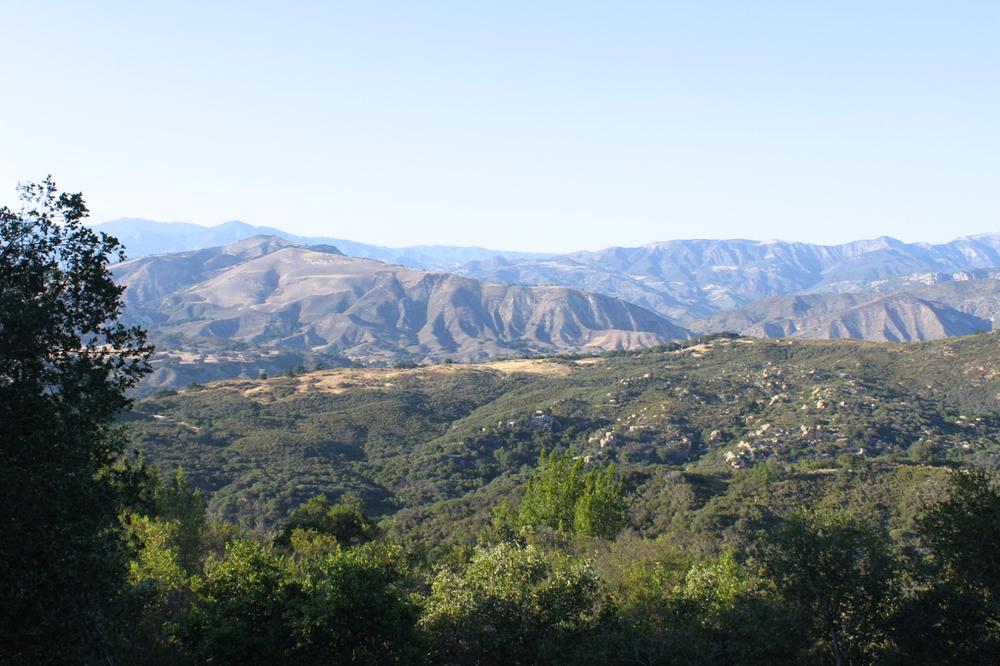California Coast | Living Minnaly26.jpg