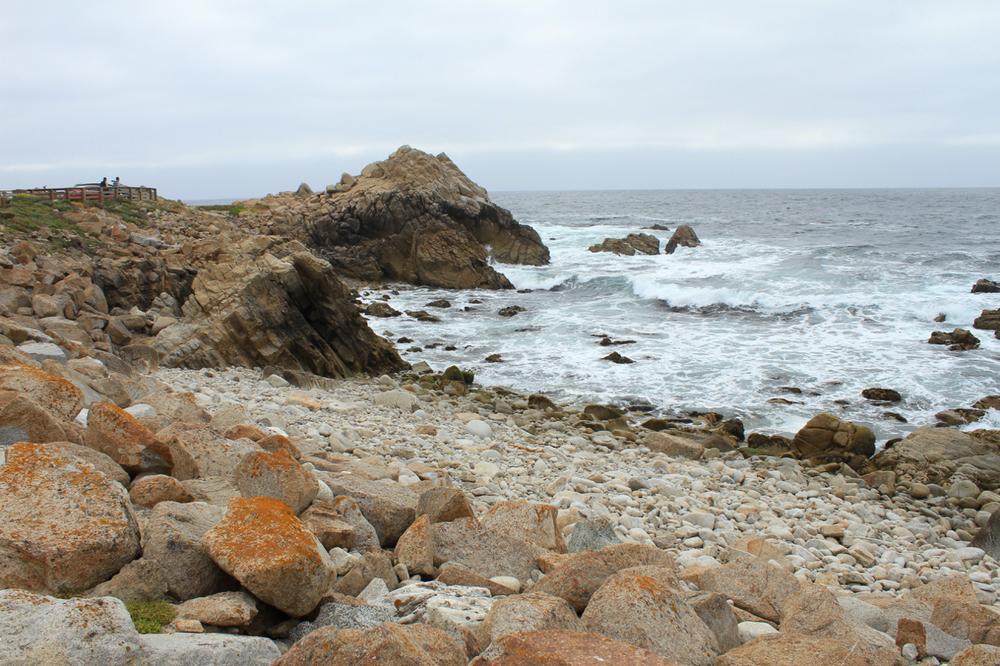 Carmel + Monterey Guide | Living Minnaly34.jpg