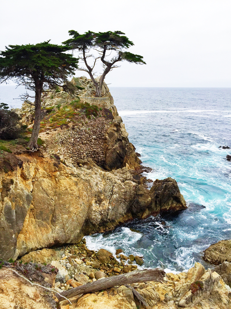 Carmel + Monterey Guide | Living Minnaly40.jpg