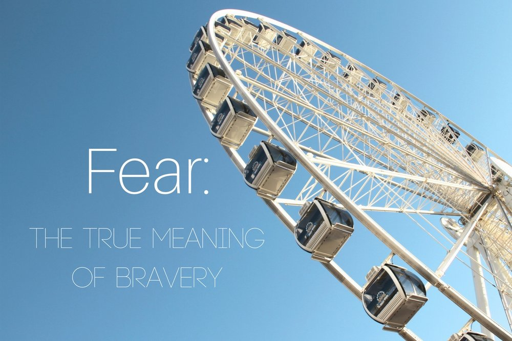 Fear: The True Meaning of Bravery | Living Minnaly