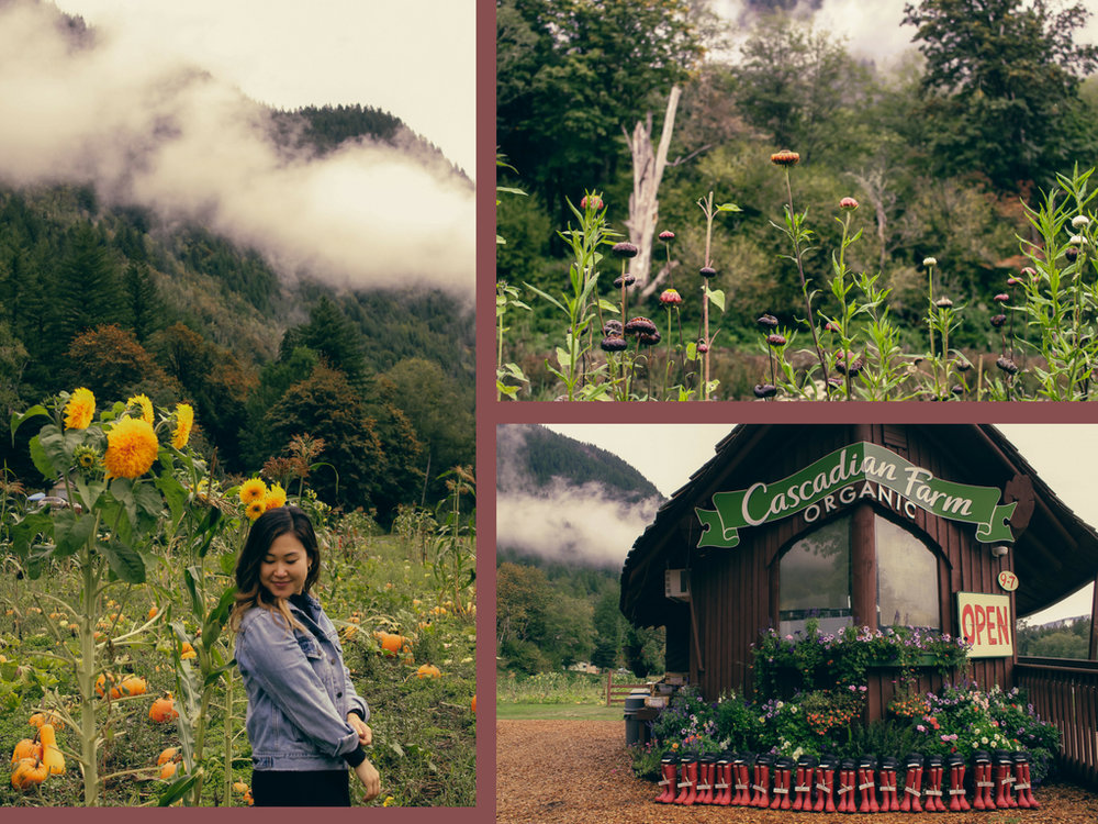 Cascadian Farm Trip x Living Minnaly__1.jpg