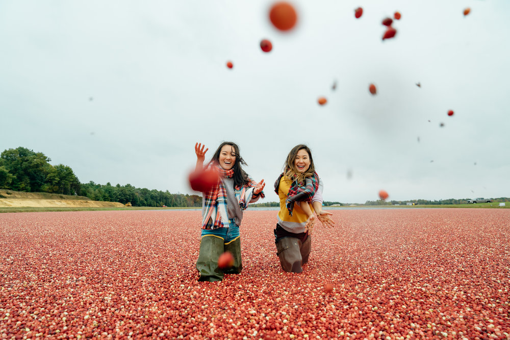 Carmex Cranberry Marsh x Living Minnaly___10.jpg