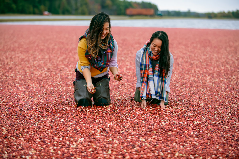Carmex Cranberry Marsh x Living Minnaly___32.jpg