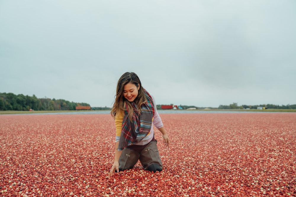 Carmex Cranberry Marsh x Living Minnaly___12.jpg