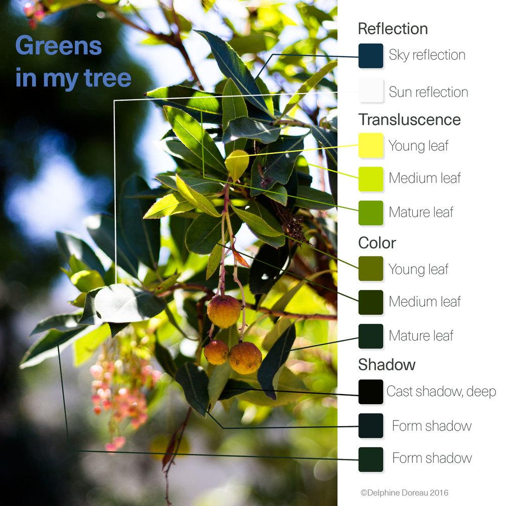 Green is a difficult color — Le Lapin dans la Lune