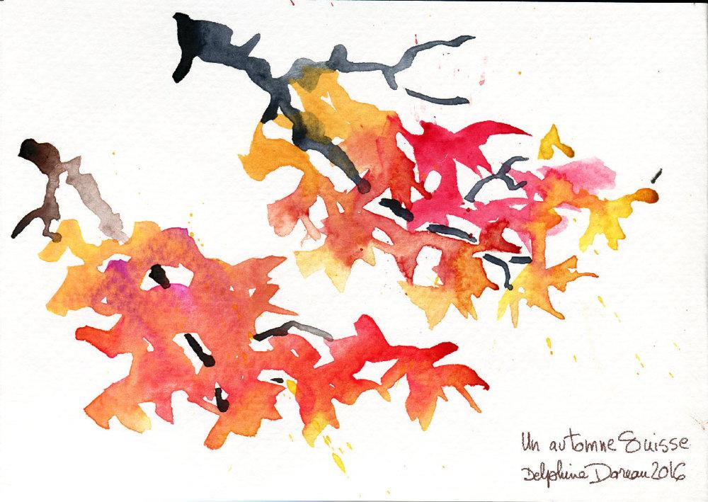 fall_trees01.jpg