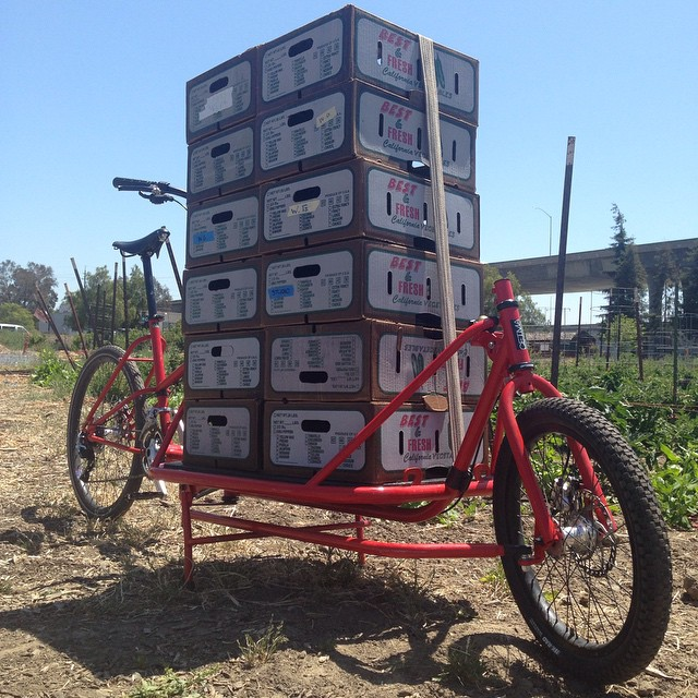 A typical Saturday at Veggielution Community Farm, post cargo bike.