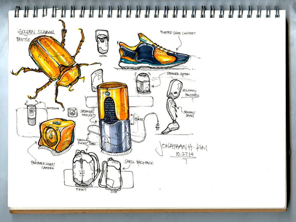 Golden Beetle Sketch 1003 PRINT 3.jpg
