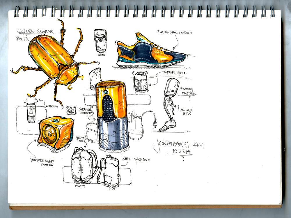 Golden Beetle Sketch 1003 PRINT 3.jpg