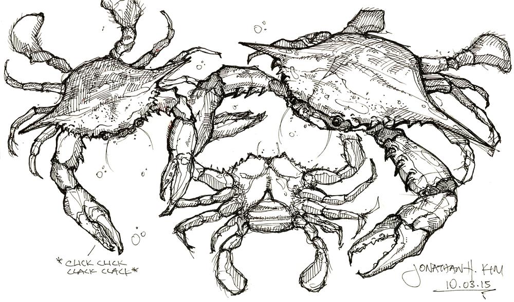 Crab Sketch Scan 1 SITE.jpg