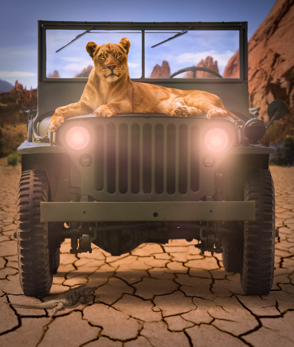 Photo Composite:  Lion on Jeep (final image)