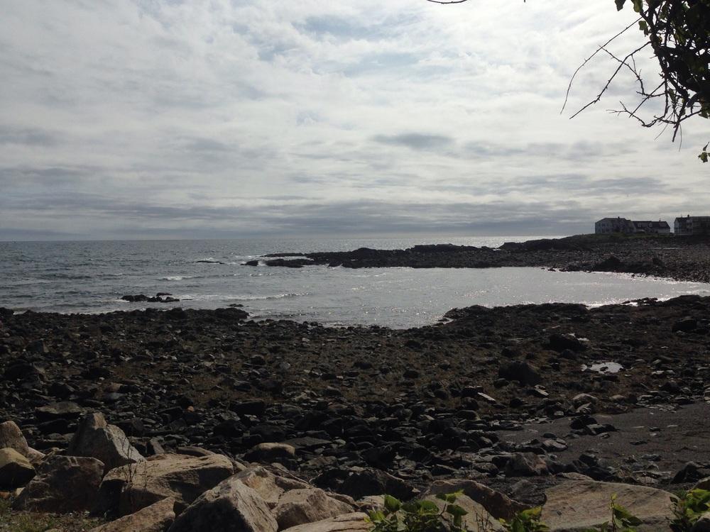 Perkins Cove at low tide