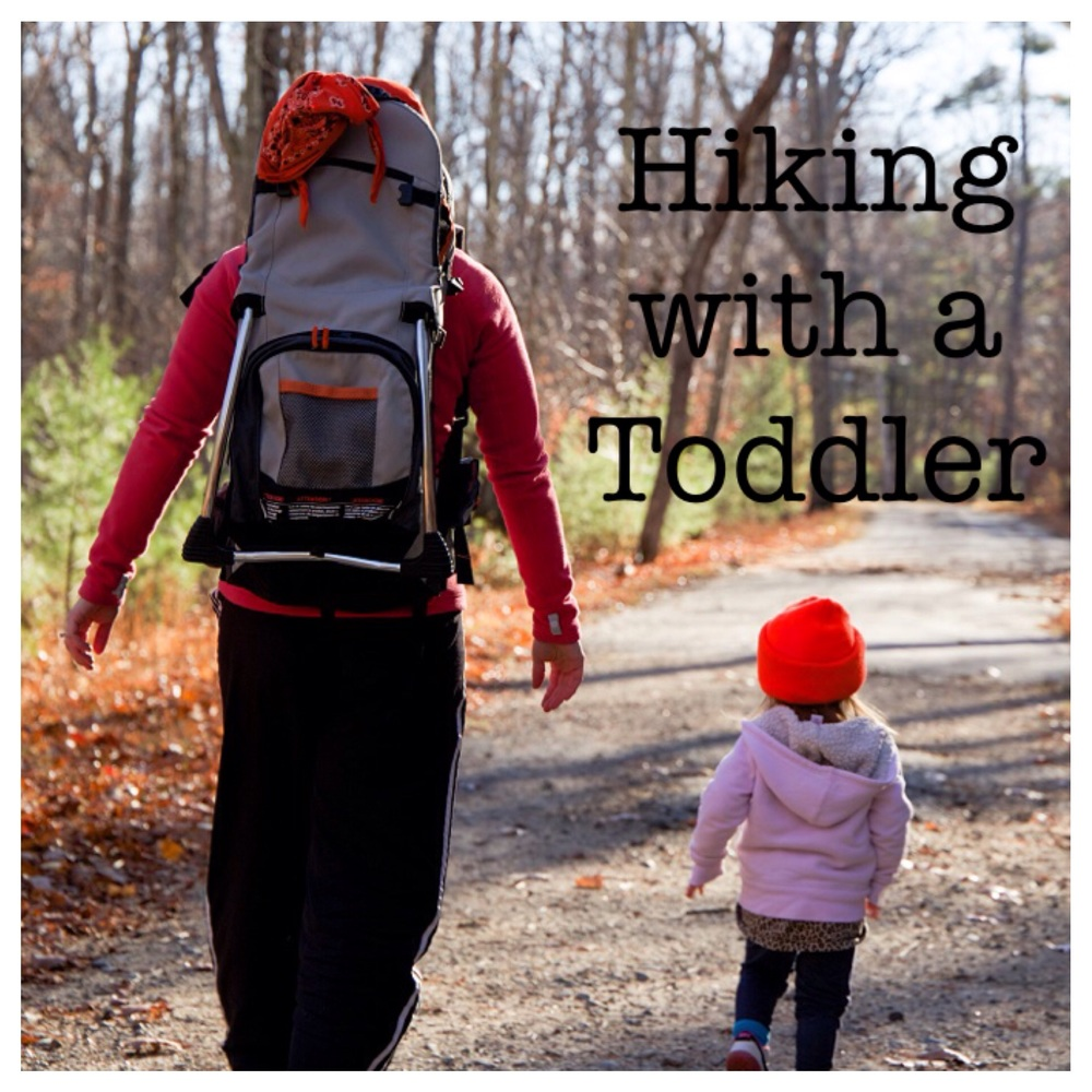 Tips and Gear for Hiking with a Toddler