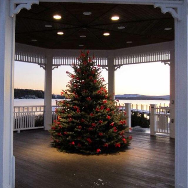 Lake living - Christmas tree by the lake.  Merry Christmas!